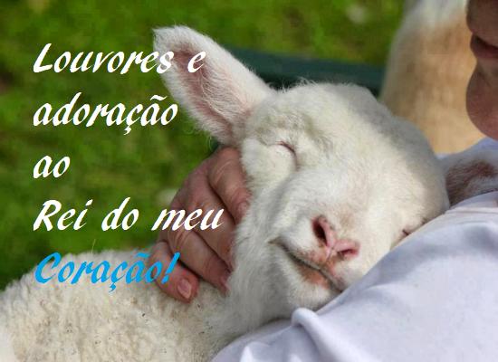 ovelha-8293661-8320740