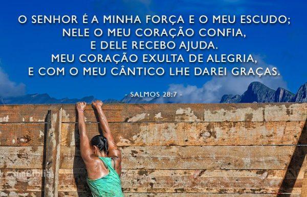 8 salmos de agradecimento